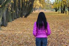 Vrouw die de herfstlandschap overzien Stock Afbeeldingen