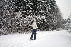 Vrouw die in de winterbos ski?t Royalty-vrije Stock Foto