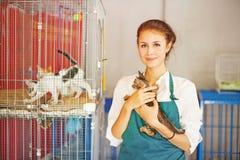 Vrouw die in dierlijke schuilplaats werken stock afbeelding