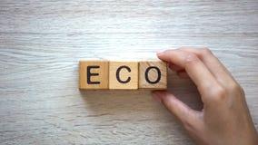 Vrouw die ecowoord van kubussen, goederen en diensten zonder kwaad aan ecosysteem maken stock afbeelding