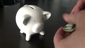 Vrouw die een Amerikaanse dollarbankbiljet zetten in een spaarvarken stock video