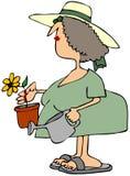 Vrouw die een bloem plant Stock Afbeeldingen