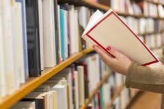 Vrouw die een boek lezen royalty-vrije stock foto