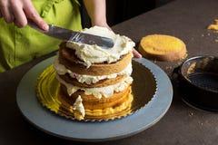 Vrouw die een cake met suikerglazuurroom verfraaien stock fotografie