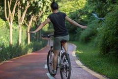 Vrouw die een fiets berijden op zonnige parksleep stock fotografie