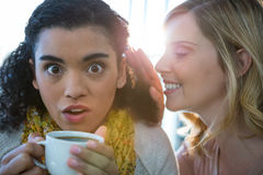 Vrouw die een geheim fluisteren in haar vriendenoor terwijl het hebben van koffie royalty-vrije stock afbeeldingen