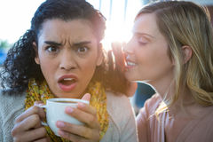 Vrouw die een geheim fluisteren in haar vriendenoor terwijl het hebben van koffie royalty-vrije stock foto's