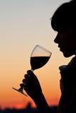 Vrouw die een glas wijn heeft Stock Foto
