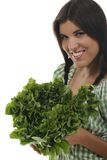 Vrouw die een groene andijviesalade houden Stock Afbeelding