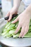 Vrouw die een groene salade praparing royalty-vrije stock fotografie