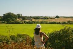 Vrouw die een grote groene rijstaanplanting overwegen Stock Afbeelding