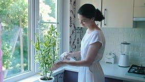 Vrouw die een installatie met water bespuiten stock videobeelden