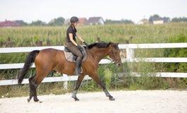 Vrouw die een Paard in Jumper Ring berijden Stock Afbeelding