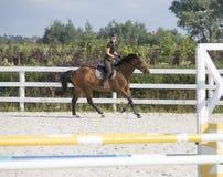 Vrouw die een Paard in Jumper Ring berijden Royalty-vrije Stock Foto's