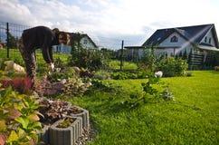 Vrouw die in een tuin, scherpe bovenmatige takjes werken van installaties stock afbeelding