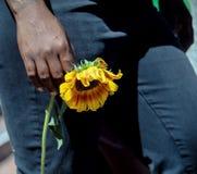 Vrouw die een verwelkte gele bloem houden royalty-vrije stock foto