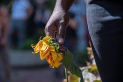Vrouw die een verwelkte gele bloem houden stock afbeeldingen