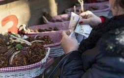 Vrouw die geld Eurosout van haar beurs zetten stock foto