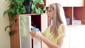 Vrouw die glas van meubilair bestrooien stock videobeelden