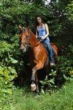 Vrouw die haar paard in het hout berijden op een de zomerdag Stock Afbeeldingen