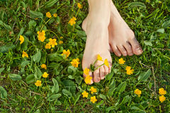 Vrouw die haar voeten in het gras rust Stock Fotografie