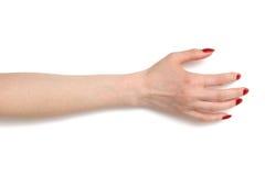 Vrouw die hand neemt Stock Fotografie