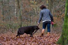 Vrouw die in het bos loopt Royalty-vrije Stock Afbeeldingen