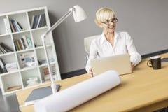 Vrouw die in het bureau werken Royalty-vrije Stock Afbeeldingen