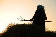 Vrouw die hooi maakt royalty-vrije stock fotografie