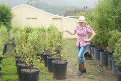 Vrouw die installaties en bomen kiezen bij kinderdagverblijf royalty-vrije stock afbeelding
