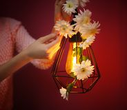 Vrouw die lamp verfraaien royalty-vrije stock fotografie