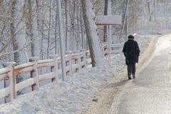 Vrouw die langs een rode die omheining lopen met sneeuw wordt behandeld Stock Foto's