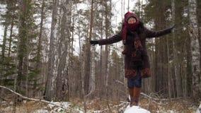 Vrouw die langs het de winterhout lopen in sneeuw stock videobeelden
