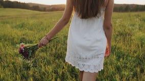 Vrouw die langzaam op gebied met boeket van bloemen ter beschikking op de zomeravond gaan Meisje die in weide lopen stock video