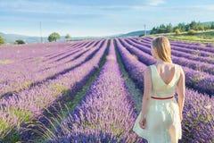 Vrouw die lavendelgebieden bekijken Stock Afbeeldingen