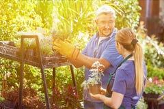 Vrouw die leertijd doen om bloemist te worden stock foto