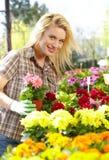 Vrouw die met bloemen bij een serre werkt. Royalty-vrije Stock Fotografie