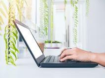 Vrouw die met laptop werkt stock afbeeldingen