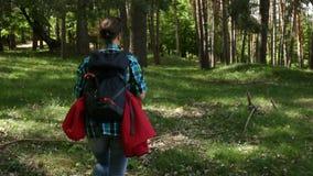 Vrouw die met rugzak op bosgebied lopen die - van aard genieten stock video