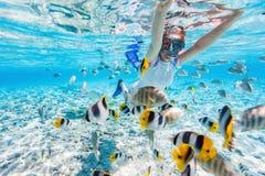 Vrouw die met tropische vissen snorkelt Royalty-vrije Stock Fotografie