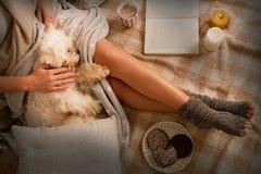 Vrouw die op bed met hond liggen stock afbeeldingen