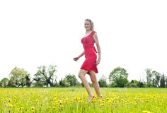 Vrouw die op gebied van bloem lopen Stock Foto