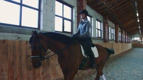 Vrouw die op paard langzaam op arena lopen stock videobeelden