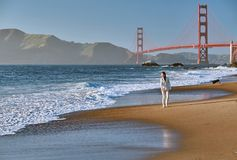 Vrouw die op strand dichtbij Golden gate bridge lopen royalty-vrije stock afbeeldingen