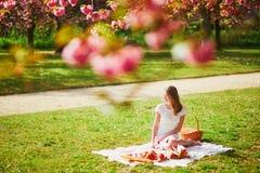 Vrouw die picknick op zonnige de lentedag hebben in park tijdens het seizoen van de kersenbloesem stock afbeeldingen