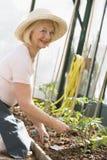 Vrouw die in serre zaden het glimlachen plant royalty-vrije stock afbeeldingen