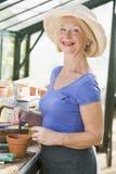Vrouw die in serre zaden in pot zet Stock Afbeeldingen