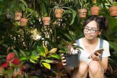 Vrouw die slimme telefoons in het huis met behulp van Royalty-vrije Stock Foto