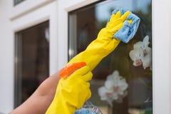 Vrouw die thuis schoonmaakt Royalty-vrije Stock Foto's