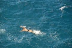 Vrouw die tussen golven in het Adriatische overzees zwemmen Stock Foto's